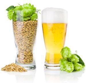 Malt og humle gør en øl til en øl