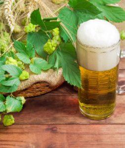 Malt og humle skaber øllets smag